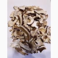 Продам білі гриби, зібрані в екологічно чистих місцях