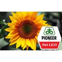 Семена подсолнечника Пионер ПР64ЛЕ25 (под Гранстар)