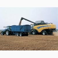 Уборка урожая зерновых бобовых и масличных культур