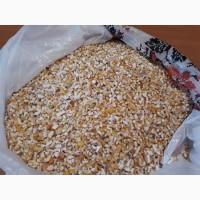 Продам кукурузу дробленую в отличном качестве
