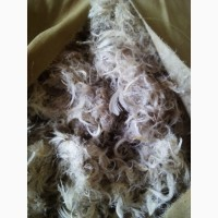 Закупаем пух-перо гуся, утки, б/у подушки, перины, семечку тыквы по договорным ценам