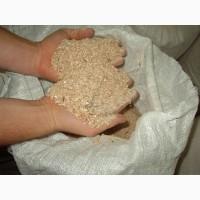 Отрубі. висівки пшеничні куплю