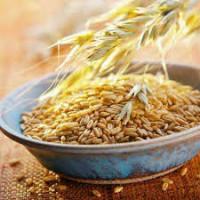 Куплю проблемное зерно в ассортименте