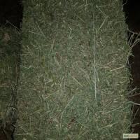 Продажа сена (луговое, люцерна). Доставка бесплатная. Качество отличное. Объёмы