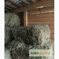 Продажа сена для лошадей, овец, коз, КРС с доставкой