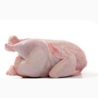 Продам курятину оптом