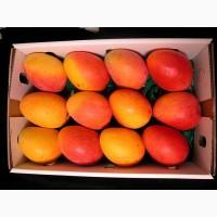Продам манго оптом по всей Украине