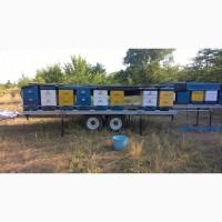 Прицеп для перевозки и содержания пчел