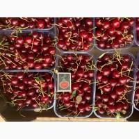 Продаємо кісточкові фрукти з саду по сезону дозрівання