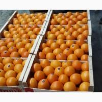 Апельсин из греции