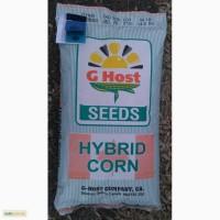 Семена кукурузы G Host GS 105 M25 (Джихост)