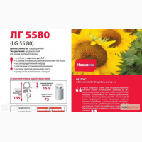 Семена подсолнечника Лимагрейн ЛГ 5635, ЛГ 5661, Тунка, ЛГ 5543КЛ