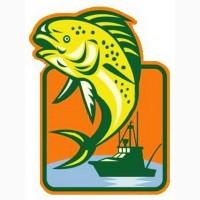 Рыбная мука купить в Украине – Бердянск