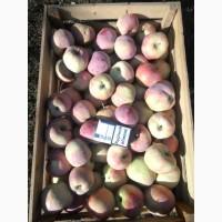 Продам яблоко Флорина 1 сорт. Оптом 2 тонны