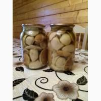 Продаються білі гриби