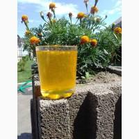Продам мед соняшниковий