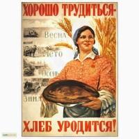 Закупаем зерновые, бобовые, расчет на весовой