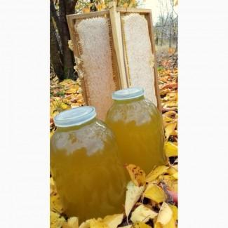 Продам мед из Белой Акации