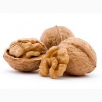 Принимаем заказы на грецкий орех(кругляк)