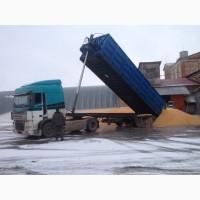 Самосвальные зерновозы. Агро контракт на перевозку зерна