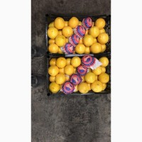 Продам апельсины