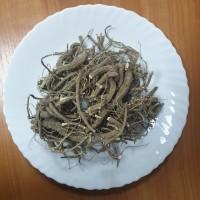 Продам сухий корінь алтеї