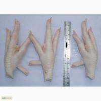Мясо и мясо птицы