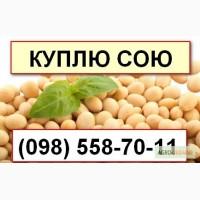 Закупка сои в Хмельницкой области. Самовывоз