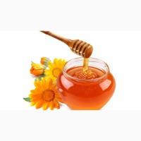 Куплю мед в Кировоградской обл. С ПОДСОЛНУХА