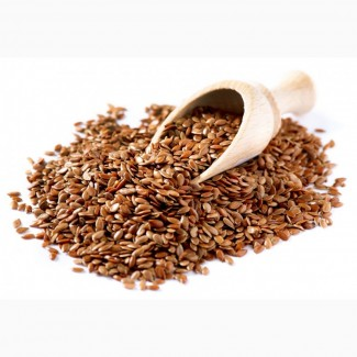 Купим зерно льна. Только экспорт