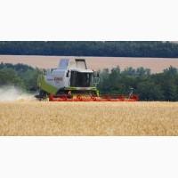 Найму комбайн в Никол.обл интересует уборка пшеницы в Николаевской обл