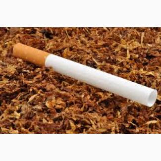 Сдать табак оптом цена gitanes сигареты купить в москве