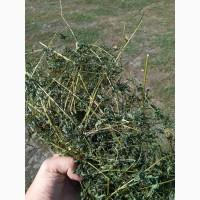 Продам траву череди