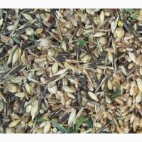 Куплю отходы зерновые, масличные, бобовые