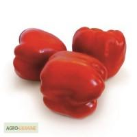 Семена перца KS 04 F1 (Китано)