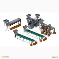 Линия для переработки грецкого ореха 1000 кг / час