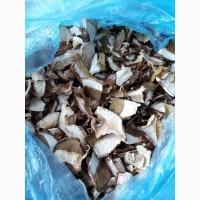 Продаю сушені і сирі білі гриби з Закарпаття