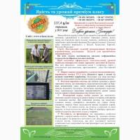 Озимая пшеница полтавской селекции
