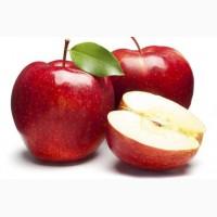 Куплю яблоко разных сортов