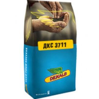 Семена Кукурузы ДКС 3711 (DKC 3711)
