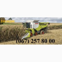 АРЕНДА Claas Lexion, John-Deere, New Holland, Case на уборку зерновых и масличных культур