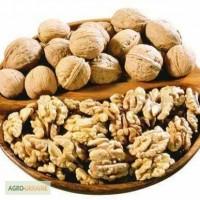 Куплю грецкие орехи цельый и очшещный