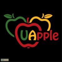Продам яблоко экспортного качества