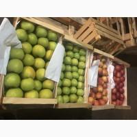 Продам високоякісні яблука з холодильника
