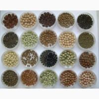 Продам бобовые на посев соя, горох, нут, чечевица, люцерна