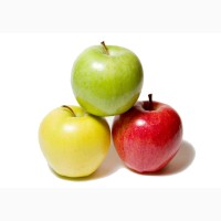 Продаю Яблоки (оптом)