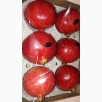 Гранат и фрукты из Испании