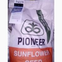 PIONEER P64LE99 (П64ЛЕ99) - Насіння соняшника