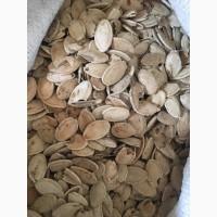 Пусте гарбузове насіння