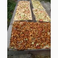 Купим сухофрукты яблочную грушевую и др от населения урожая 2019
